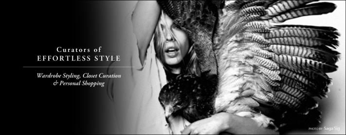 stylehawk-home2